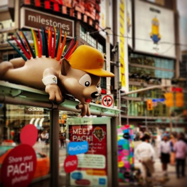 """Mascote do Pan, o porco-espinho Pachi na praça Yonge-Dundas, a """"Times Square"""" de Toronto"""